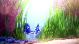 Finding Dory Little Dory