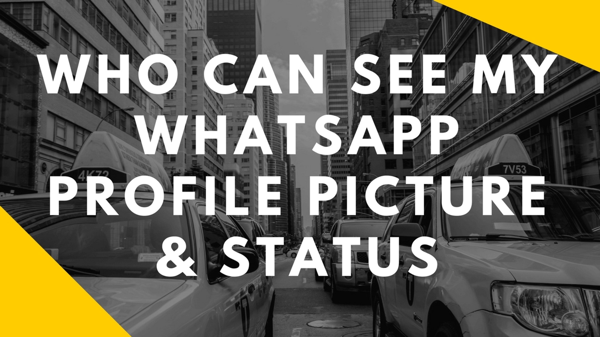 How To Know Who Can See My Whatsapp Profile Picture and Status In  Hindi/Urdu April 2017