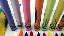 Which Crayon Color Is Crayola Ditchi