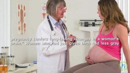 Pregnancy Can Change a Woman's Brian