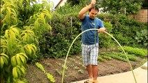 Et concombres facile première jardin idées plantation treillis 12 courgettes