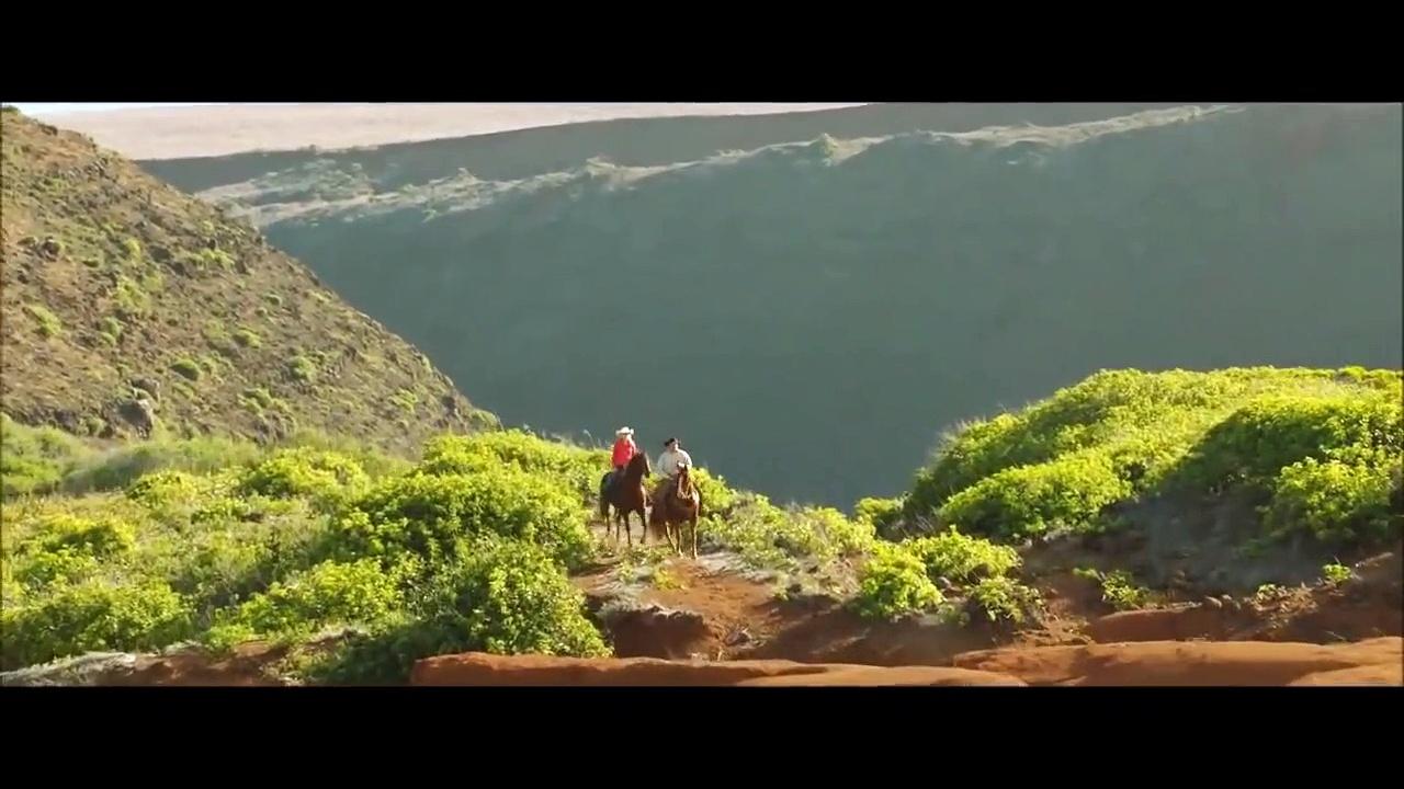 Horses for Kids – Drone Horses Video – Farm Animq