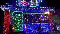 Pet Dinosaur Likes Christmas Lights Extreme Lighting Display Toy Freaks Love Dinosaurs