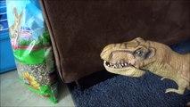Pet Dinosaur Loves Pet Bunny Rex Feeding Rabbit Toy Freaks Style