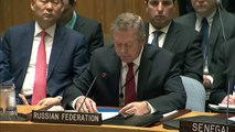 Russia Statement on North Korea at UN Security Council