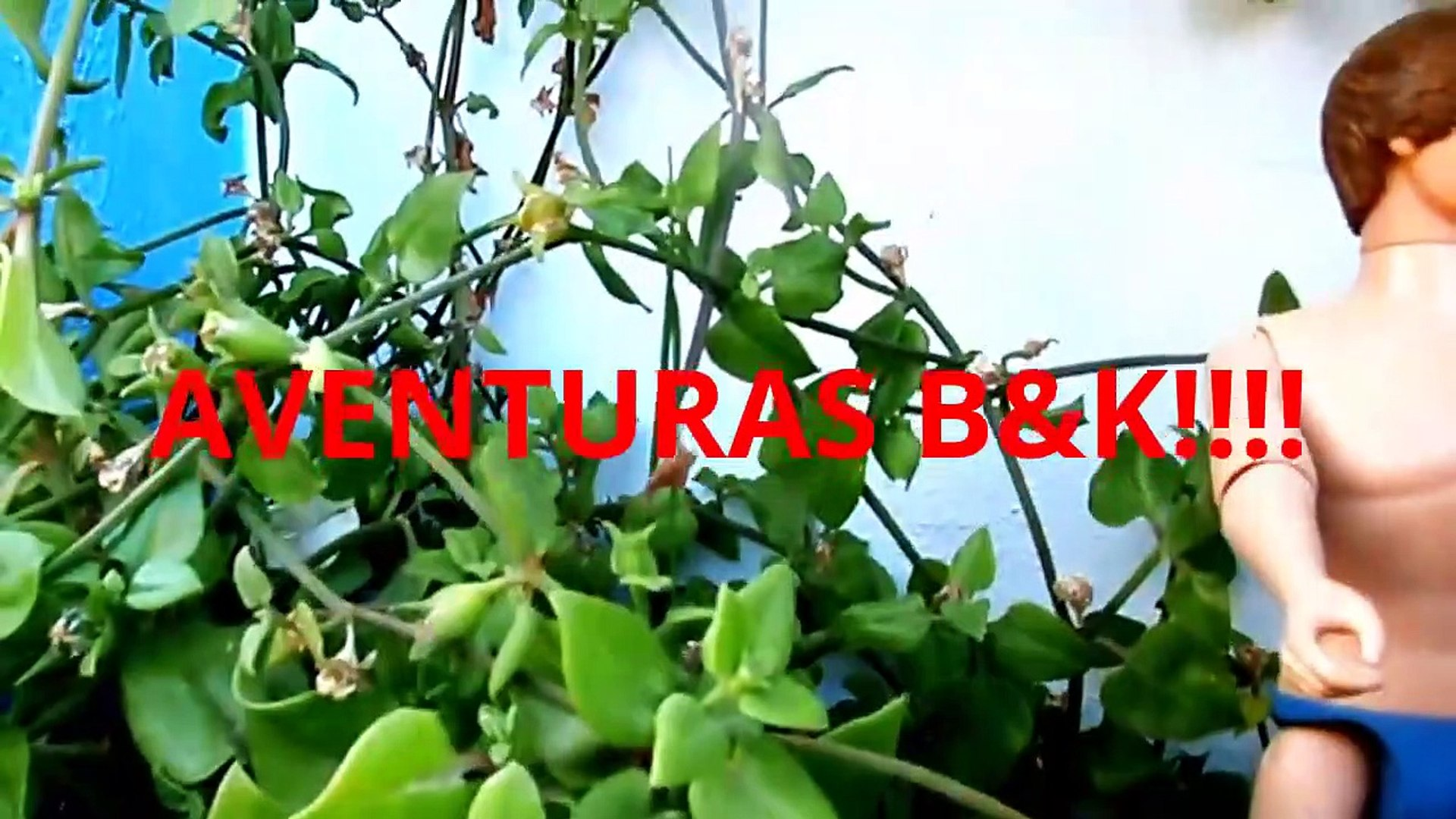 Presentación nueva SERIE ¡¡¡LARAS B&K!!!  B&K Episodes!!!
