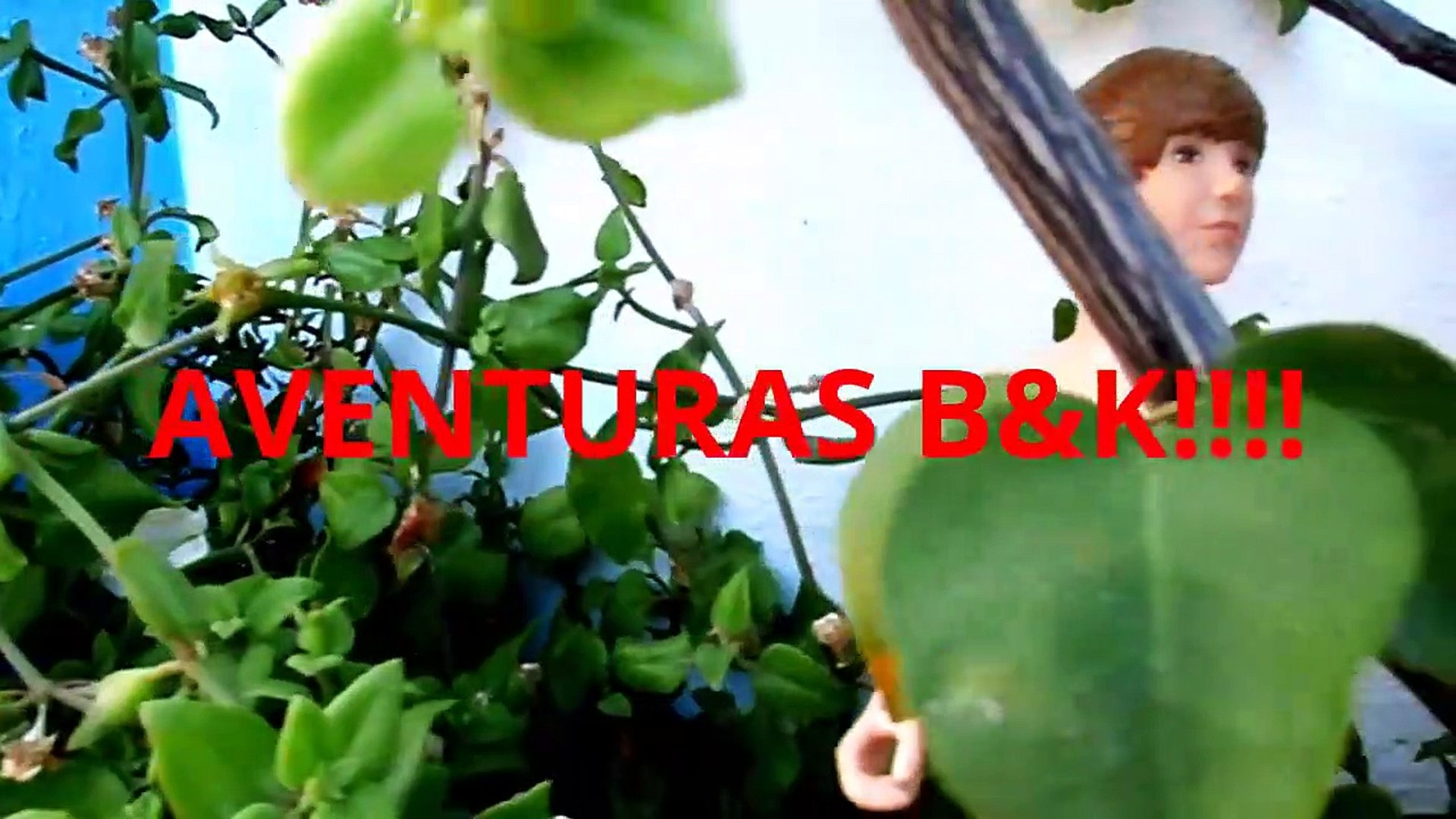 Presentación nueva SERIE ¡¡¡LAS AVENTURAS B&K!!!  B&K Episodes!!!-N
