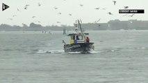 Bretagne  - les pêcheurs plutôt satisfaits des quotas de pêche-jeOAUz3ta2Q