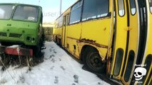 Abandoned buses. Forgotten rusty buses. Abandoned vehicles Ikarus bus