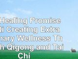 read  The Healing Promise of Qi Creating Extraordinary Wellness Through Qigong and Tai Chi 120d62dc