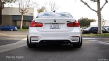 Arqray Full Exhaust Sound Clip - BMW F8