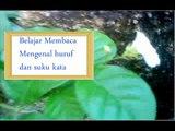 Belajar membaca, lagu abc, mengenal huruf dan suku kata, Bahasa Indonesia