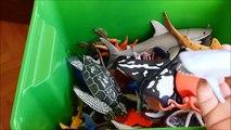 Shark Toys Kids Toy Box Sea Animals Toy Whales sea turtles c