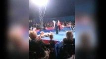 Russie : Un ours attaque les spectateurs d'un cirque  (vidéo)