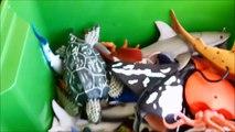 Shark Toys Kids Toy Box Sea Animals Toy Whales sea turtles