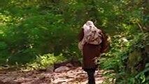 Domaća Serija -  Kud puklo da puklo - 116 Epizoda 2015 Cijela,Filmovi serije tv online besplatno hd