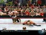 Shawn michaels pedigrees Triple H