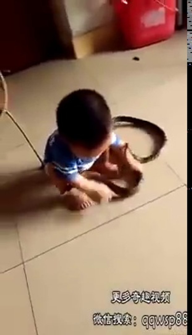 Oh God child with big snake...........funny videos and prank calls funny clips funny cats funny mome