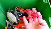 Shark Toys Kids Toy Box Sea Animals Toy Whales sea turtles caretta caretta turtles