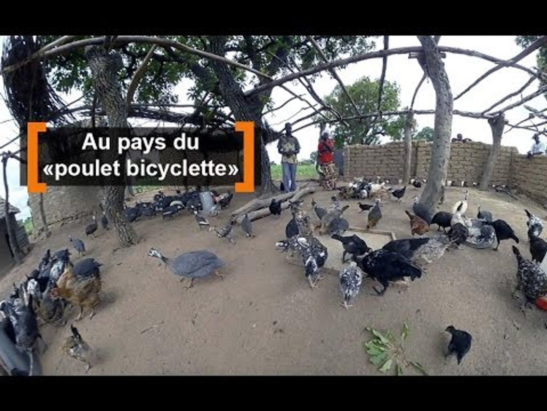 Burkina Faso : Au pays du