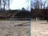 Cheval de sport saute une ligne d'obstacles