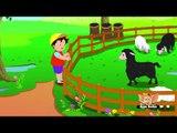 Baa Baa Black Sheep in Hindi
