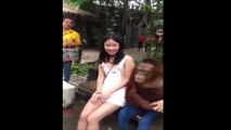 Funny Chinese videos - Prank chinese 201dsa can't stop laugh ( N
