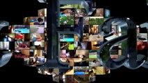 80.Animal Fails of the Week 3 August 2016 - Animal Fail Videos - Animal Fails Compilation 2016