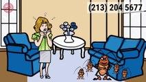 Pest Control Cecil AL