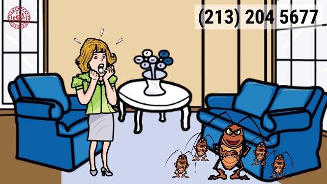 Pest Control Fosters AL