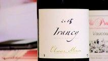 Bourgogne : Précipitez-vous sur les vins d'Irancy !