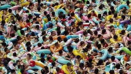 Tutti ammassati in una piscina: una tipica giornata torrida in Cina. Manca l'aria solo a guardare!