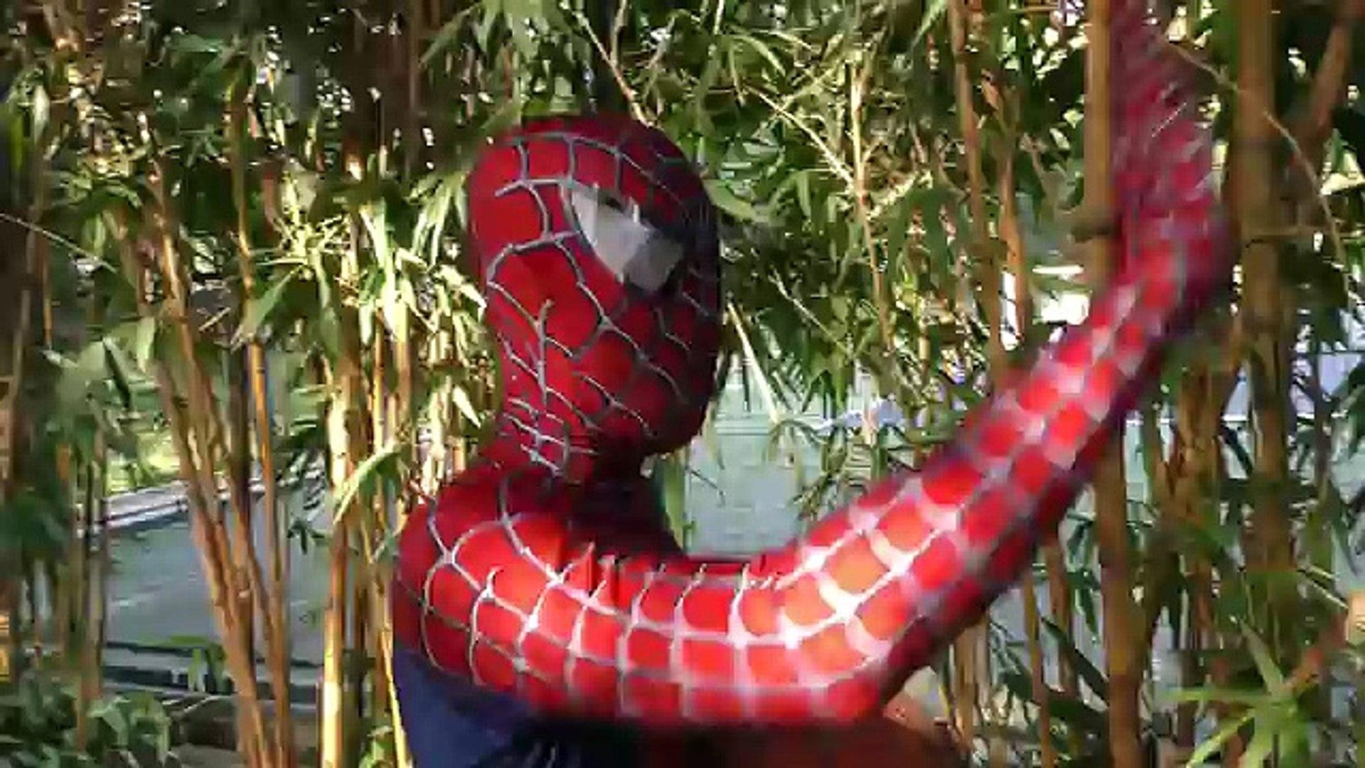 Spiderman Turn Were Wolf! Superheroes Monster Joker Venom Hulk Muscle Action Movies Wolf Spider