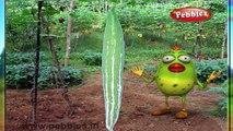 Snake Gourd | 3D animated nursery rhymes for kids with lyrics  | popular Vegetables rhyme for kids | Snake guard song  | Vegetables songs | Funny rhymes for kids | cartoon  | 3D animation | Top rhymes of Vegetables for children