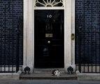 L'image à ne pas louper: Larry the cat défend son territoire devant le 10, Downing Street
