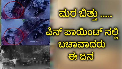 viral video :People Cheat de@th After Tree falls on road | Oneindia Kannada