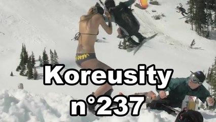Koreusity n°237