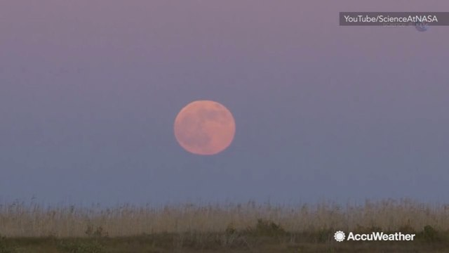 The Strawberry 'Mini Moon' rises on June 9
