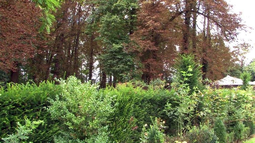 Visite Remaucourt, parc du château et l'église Saint Géry
