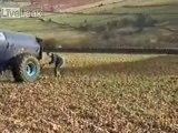 Régis & Son Tracteur AU LISIER