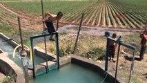 Şanlıurfa Sıcaktan Bunalan Çocuklar Kanalda Yüzüyor