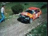 Rallye Terre des Alpes 2003