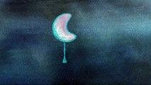 Guten Abend, gute Nacht - Schlaflieder