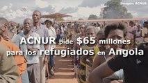 ACNUR pide 65 millones de dólares para los refugiados congoleños en Angola