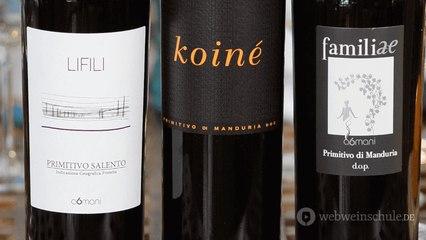 Weinschule Primitivo