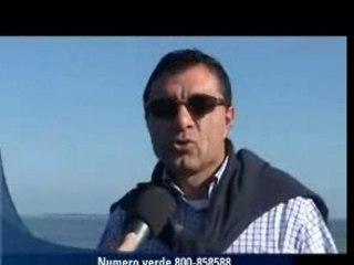 Monopolio rosso per le vongole in Romagna