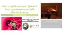 Insectes pollinisateurs et plantes à fleurs pas toujours une belle histoire d'amour (4/5)