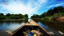 Mekong Delta Vietnam   Vietnam T