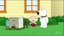 Family Guy   Barry Bonds Steroids