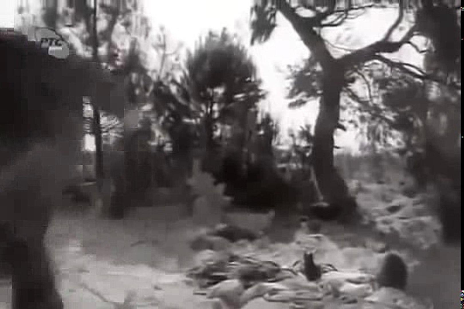 Rezervista 1967   /    Domaći film